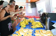 Frutas da Estação, servidas como cortesia!